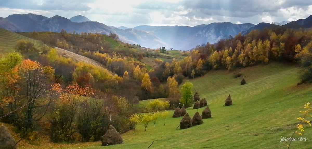 muntii-trascaului-143426
